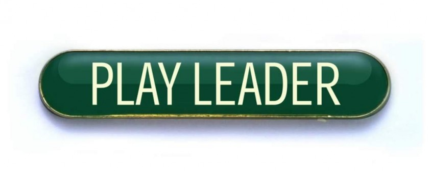 play leader badge green  pack of 5