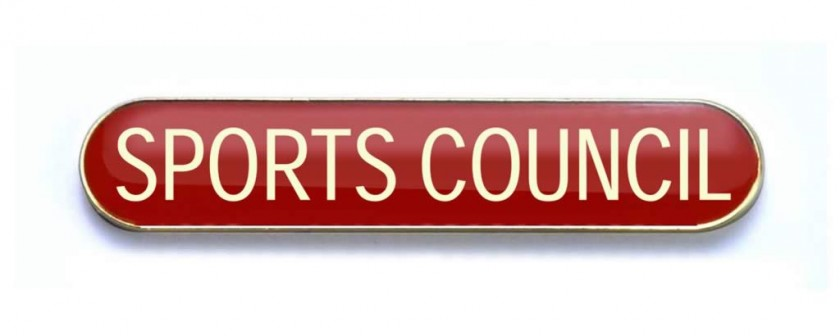 Image result for sports council
