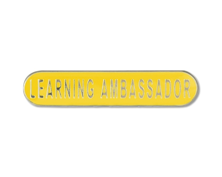 Image result for learning ambassador badges
